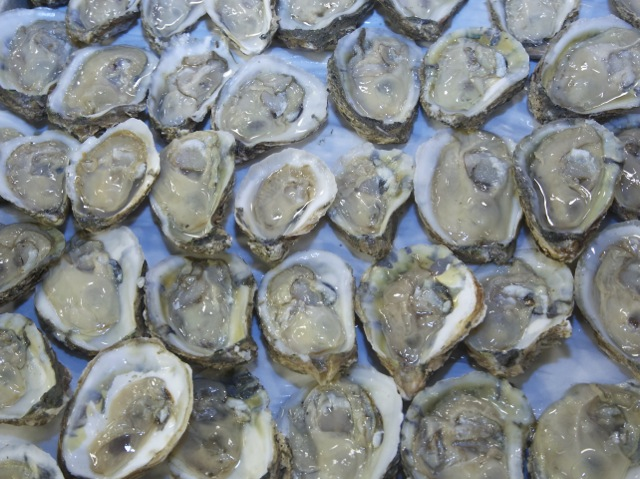 Top Oyster Happy Hours In Philadelphia – CBS Philly