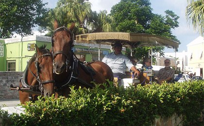 (A buggy ride in St. George, Bermuda.  File photo by Jay Lloyd)