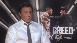 "Sylvester Stallone talks about the latest installment in the Rocky series, ""Creed"" (credit: CBS3)"