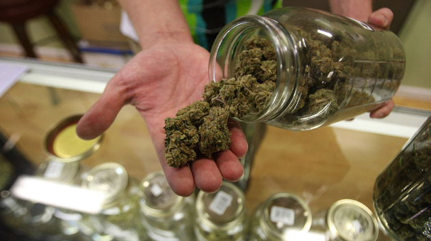 It's A Serious Degree': Students Across US Now Majoring In Marijuana