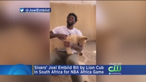 Sixers' Joel Embiid Bit By Lion Cub While In South Africa For NBA Africa Game