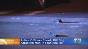 Police Officers Shoot Dog After Man Attacked In Franklinville