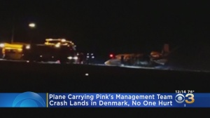 Plane Carrying Pink's Management Team Bursts Into Flames After Crash Landing In Denmark
