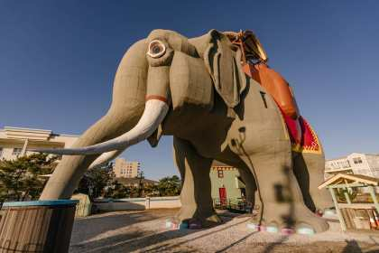 Jersey Shore's Iconic Lucy The Elephant To Be Listed On Airbnb For One-Night Stays In March