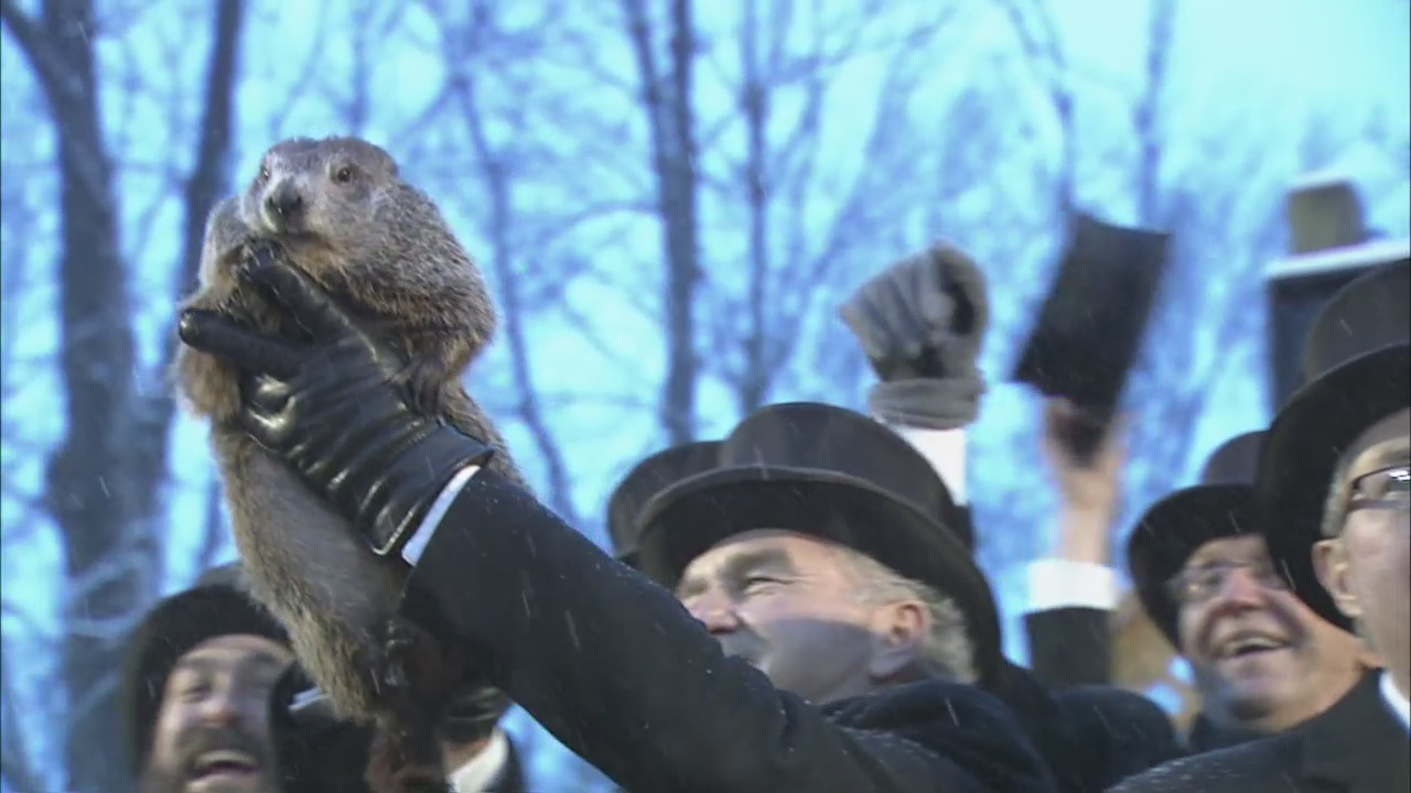 Punxsutawney Phil Doesn't See Shadow, Predicts Early Spring