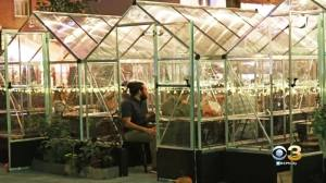 Harper's Garden In Rittenhouse To Debut Private Heated Greenhouses