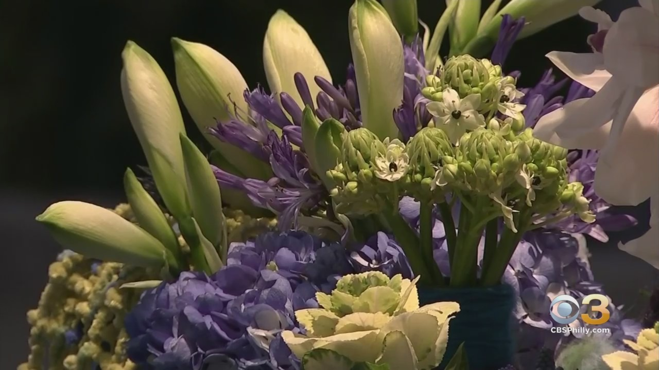 WATCH LIVE: Pennsylvania Horticultural Society To Preview Plans For 2021 Philadelphia Flower Show