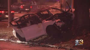 Woman Killed After Car Crashes Into Tree, Bursts Into Flames On Roosevelt Boulevard