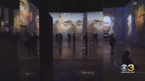 Confusion Over Van Gogh Exhibits Prompts Warning From Better Business Bureau