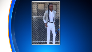 Simone-Monea Rogers -15-Year-Old Girl Shot In Head Dies Following Shooting At Jerome Brown Playground In Tioga, Philadelphia Police Say