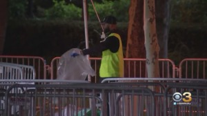 Cleanup Underway On Benjamin Franklin Parkway After Made In America Festival Wraps Up