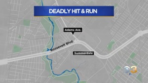 'They're Driving Like Idiots': Philadelphia Police Continue Search For Driver In Deadly Roosevelt Boulevard Hit-And-Run