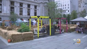 Harvest Weekend Kicks Off At Dilworth Park With Entertainment, Food & Drinks, Hay Maze